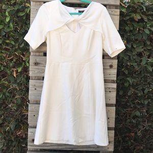 BCBGMaxazria White Retro Fitted Dress